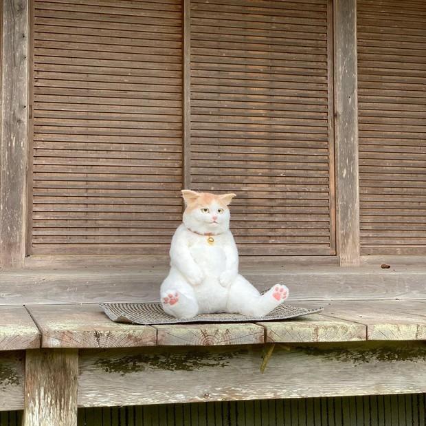Balo mèo gây lú phá đảo trái tim netizen Nhật, giống thật tới nỗi hội chị em nhìn qua đã muốn xuống tiền mua luôn - Ảnh 4.