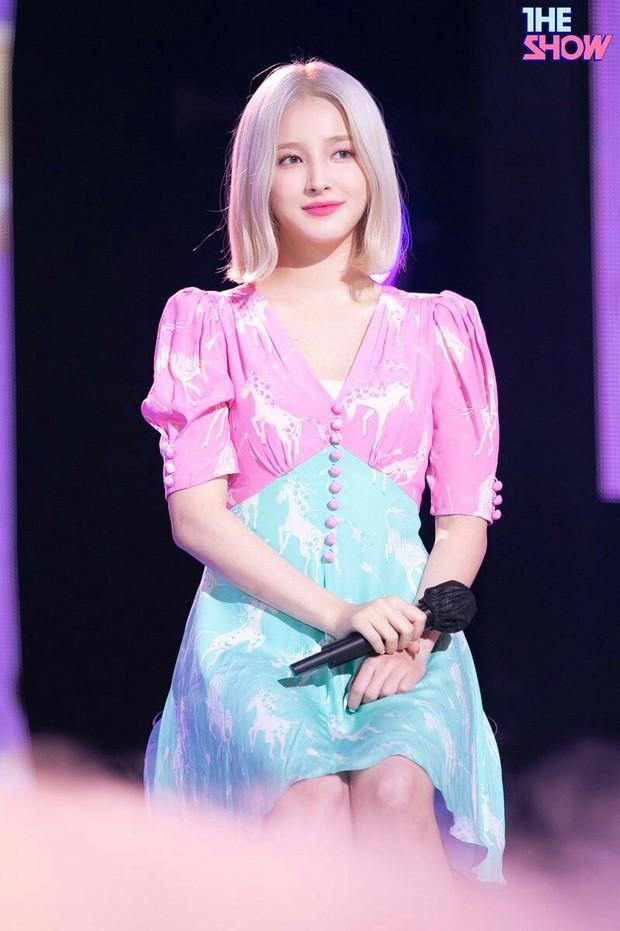 Loạt idol lai đình đám nhất Kpop: Bông hồng lai Somi lột xác cực sexy, nam thần được ví như Leonardo DiCaprio thời trẻ là ai? - Ảnh 10.