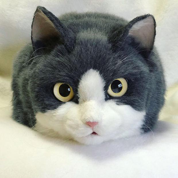 Balo mèo gây lú phá đảo trái tim netizen Nhật, giống thật tới nỗi hội chị em nhìn qua đã muốn xuống tiền mua luôn - Ảnh 16.