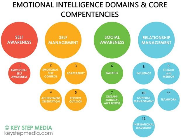 Nhà nghiên cứu Harvard cho biết những người thông minh về cảm xúc thường có 12 đặc điểm, bạn có muốn tự soi mình? - Ảnh 1.