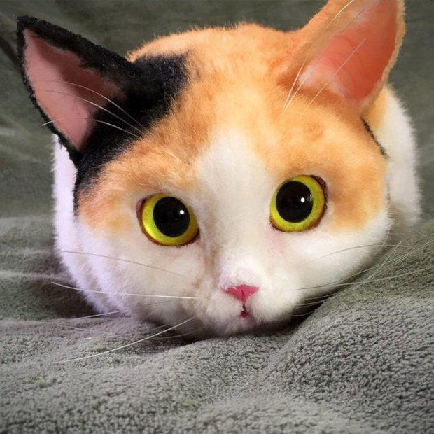 Balo mèo gây lú phá đảo trái tim netizen Nhật, giống thật tới nỗi hội chị em nhìn qua đã muốn xuống tiền mua luôn - Ảnh 17.