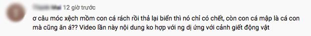 Tranh cãi việc nhà Quỳnh Trần JP ra biển câu cá mập con để ăn, cảnh máu me cũng được đưa ngay lên video - Ảnh 7.
