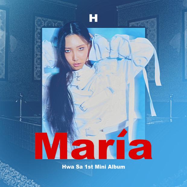 Đây là nhóm nữ Kpop duy nhất cả 4 thành viên tách ra solo đều bán album trên 50 nghìn bản, rất tiếc lại không phải BLACKPINK - Ảnh 5.