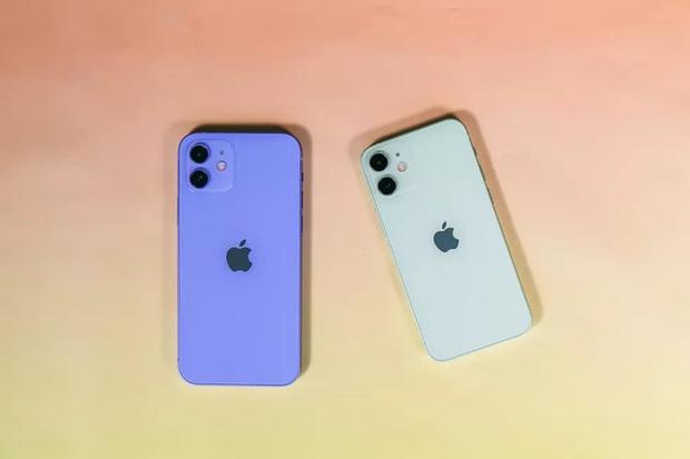 Rò rỉ hình ảnh thực tế iPhone 12 tím, đẹp đến nao lòng! - Ảnh 6.