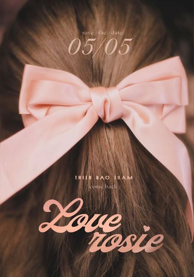 Thiều Bảo Trâm giải mã ý nghĩa 43 tấm hình chữ Love, tung poster như mời cả showbiz đi ăn cưới! - Ảnh 2.