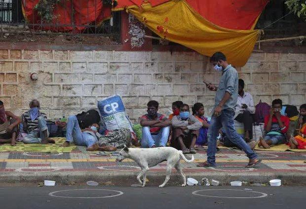 Ấn Độ liên tiếp lập kỷ lục ca mắc mới, Thái Lan có số người tử vong theo ngày cao nhất - Ảnh 2.
