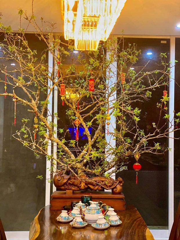 Nhà phố 450m2 của vợ chồng Hà Nội khiến dân tình loá mắt vì như biệt phủ gỗ, có món nặng đến mức cần 25 người khiêng - Ảnh 6.