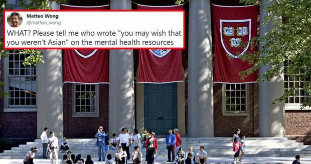 Đại học Harvard vừa có một phát ngôn khiến cộng đồng người gốc Á phẫn nộ, buộc phải lên tiếng xin lỗi - Ảnh 2.