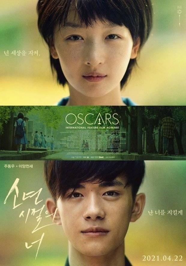 Em Của Thời Niên Thiếu có động thái chạy đua Oscar đầu tiên nhưng netizen vẫn cà khịa nát nước! - Ảnh 1.