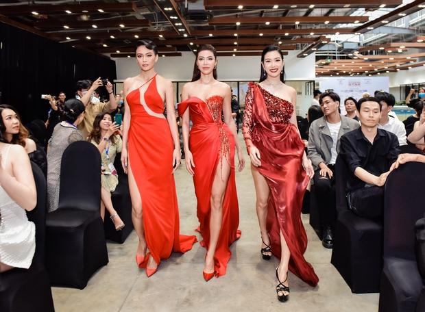 Thúy Vân sẽ làm thế nào trước 2 nữ hoàng drama Minh Tú - Mâu Thủy trong show thực tế mới? - Ảnh 1.