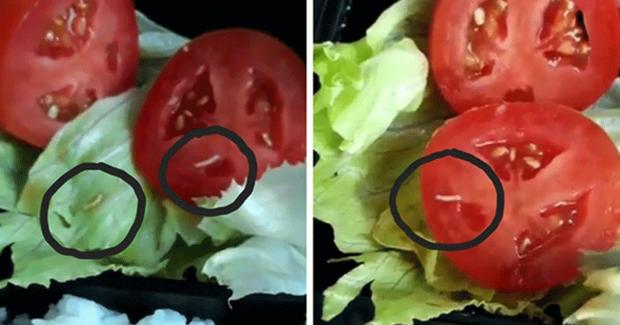 Hàng loạt vụ đồ ăn có giòi nhung nhúc bị phanh phui: Từ sự cẩu thả trong chế biến đồ ăn đến sức khỏe người tiêu dùng bị đe dọa - Ảnh 4.