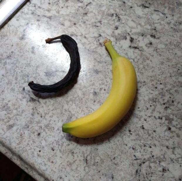 Những pha biến hình của các loại thực phẩm khi bị con người bỏ mặc, xem tới ảnh cuối ai cũng há hốc mồm kinh ngạc - Ảnh 20.