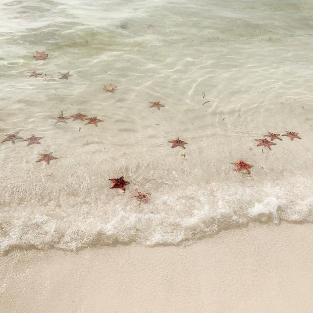 Đến Rạch Vẹm - Phú Quốc đâu chỉ để vạch cát tìm sao: Dưới đây chính là loạt trải nghiệm để đời mà bạn không nên bỏ lỡ! - Ảnh 26.