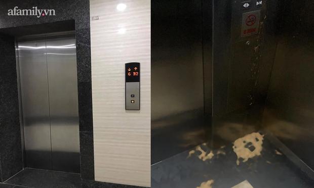 Thêm chuyện kinh dị ở chung cư thủng khiến 2 người rơi từ tầng 2: Tranh thủ lúc không có ai, cư dân tè luôn trong thang máy - Ảnh 3.