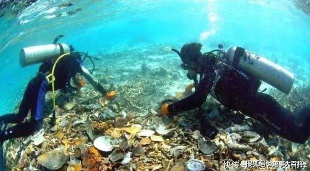 Tại sao có 1.600 tấn vàng chìm dưới đáy hồ Baikal mà không ai trục vớt? - Ảnh 3.