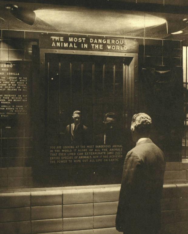 Cuộc triển lãm kỳ lạ nhất lịch sử: Chỉ độc một chiếc gương soi mà khiến ai cũng phải suy ngẫm - Ảnh 1.