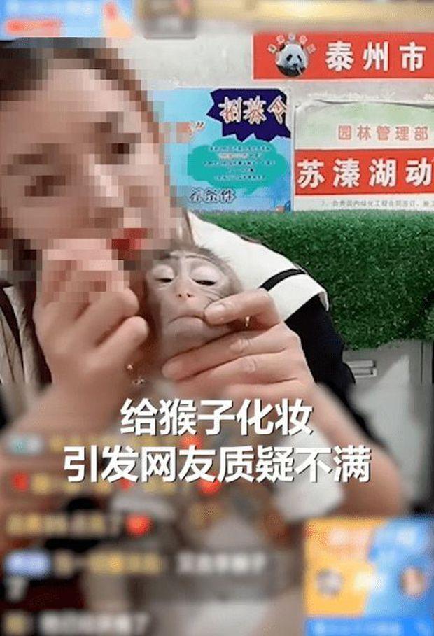 Trang điểm cho khỉ trên sóng để quảng cáo bán kem trộn, mỹ phẩm, nữ streamer khiến CĐM phẫn nộ - Ảnh 2.