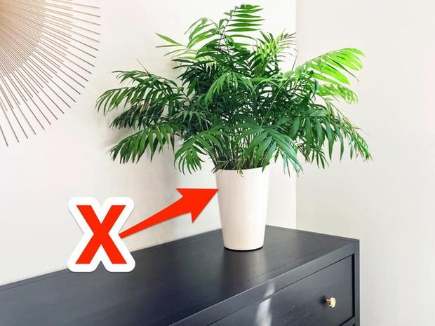 Mắc phải 6 sai lầm này thì đồ nội thất có đắt đến mấy vẫn sẽ đội nón ra đi như thường - Ảnh 3.