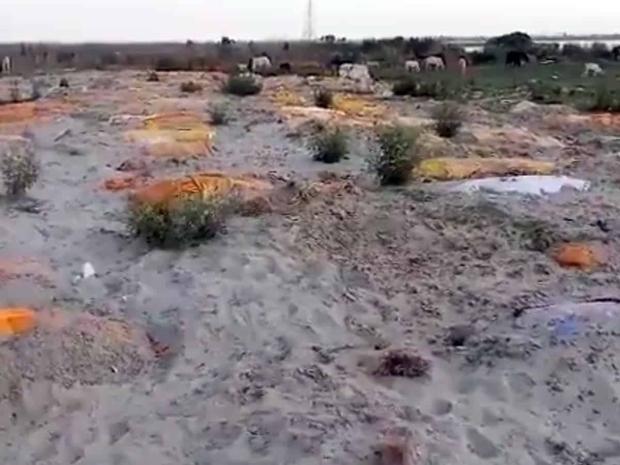 Sau vụ xác chết trôi dạt trên sông Hằng, Ấn Độ tiếp tục phát hiện hàng chục thi thể vô danh bị chôn vùi dưới cát - Ảnh 1.