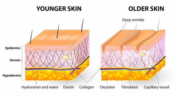 Sau 25 nhất định phải mua collagen - thần dược chống già nhà nhà đều mê - Ảnh 2.