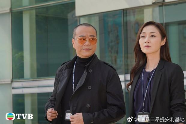 Phim giải nghệ TVB của Âu Dương Chấn Hoa rớt đài vì lừa dối khán giả, PR quá lố sao nữ Hoàn Châu Cách Cách? - Ảnh 3.
