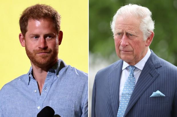 Harry tấn công dồn dập Hoàng gia Anh, trực diện phê phán cả cha ruột với loạt tuyên bố nặng nề gây sốc - Ảnh 3.
