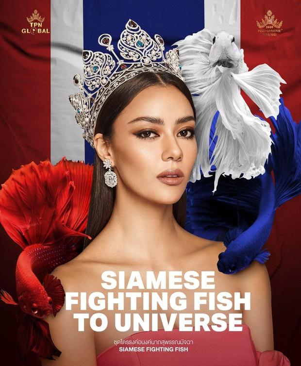 Dự đoán top 10 căng đét vào Chung kết Miss Universe: Thái Lan - Philippines chặt chém quyết liệt, Khánh Vân liệu có làm nên chuyện? - Ảnh 8.
