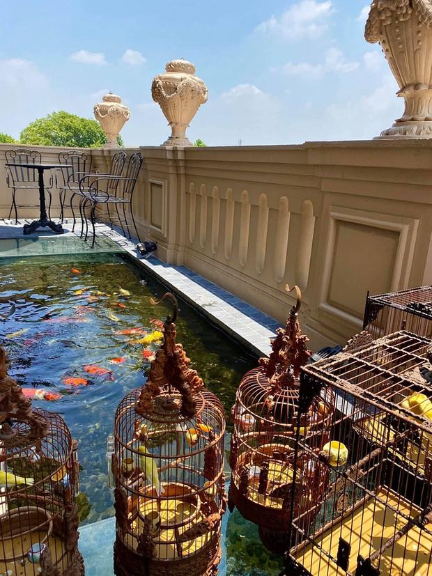 Biệt thự phố cổ Hà Nội của đại gia thời trang Chương Tailor: Xây bể cá Koi 5 tỷ ở ban công, dành nguyên tầng điều hòa nuôi chim đột biến - Ảnh 6.