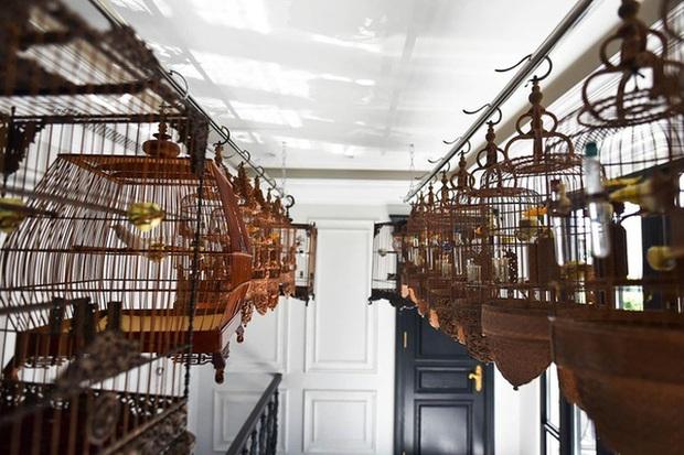 Biệt thự phố cổ Hà Nội của đại gia thời trang Chương Tailor: Xây bể cá Koi 5 tỷ ở ban công, dành nguyên tầng điều hòa nuôi chim đột biến - Ảnh 7.