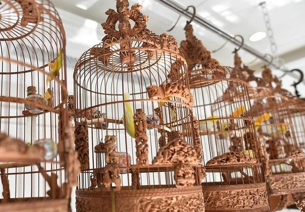 Biệt thự phố cổ Hà Nội của đại gia thời trang Chương Tailor: Xây bể cá Koi 5 tỷ ở ban công, dành nguyên tầng điều hòa nuôi chim đột biến - Ảnh 9.