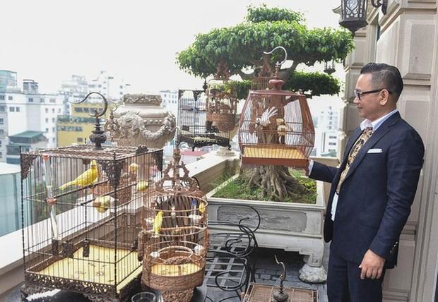 Biệt thự phố cổ Hà Nội của đại gia thời trang Chương Tailor: Xây bể cá Koi 5 tỷ ở ban công, dành nguyên tầng điều hòa nuôi chim đột biến - Ảnh 10.