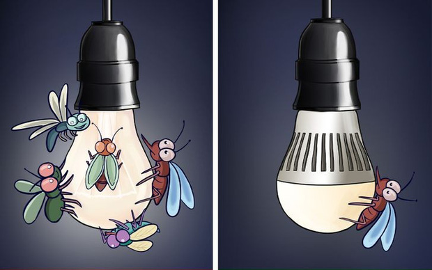 8 sai sót khiến côn trùng làm tổ trong nhà bạn, đuổi mãi cũng không hết - Ảnh 2.