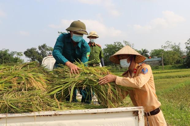 Vĩnh Phúc: Đoàn viên, công an giúp các gia đình bị cách ly y tế thu hoạch lúa chín - Ảnh 2.