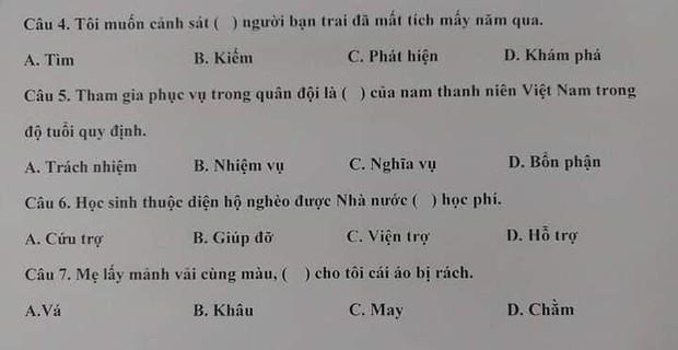 Đề thi năng lực tiếng Việt của Nhật Bản đọc xong lú luôn, có người còn nghi ngờ khả năng nói tiếng mẹ đẻ của mình vì quá khó - Ảnh 2.