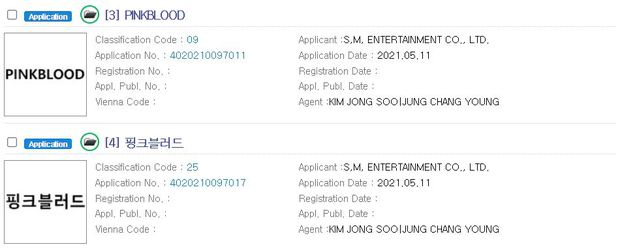 SM tung intro PinkBlood bị nghi ngay là hint cho nhóm nữ mới, Yuri (SNSD) cũng góp mặt? - Ảnh 2.