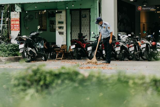 Sài Gòn mùa hoa dầu bay thống trị khắp phố: Giới trẻ check-in đẹp thổn thức, nhưng cô chú lao công chắc cực lắm à nghen! - Ảnh 11.