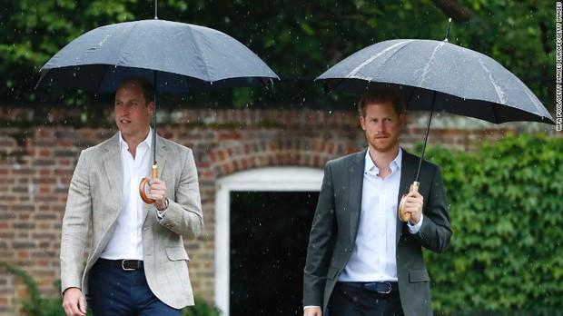 Giữa lúc căng thẳng lên cao trào, bức thư cũ của Công nương Diana được tiết lộ, kể về quan hệ của anh em William - Harry gây xúc động - Ảnh 1.