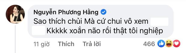 Bị antifan nói hai từ, bà Phương Hằng đáp trả thế nào mà được cả ngàn người like? - Ảnh 3.