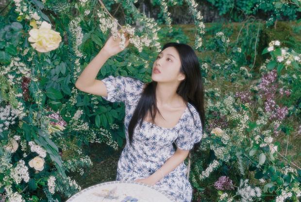 MXH Hàn náo loạn vì bộ ảnh phim của mỹ nhân mới được khai quật, đẹp đến mức này bảo sao dọa soán ngôi nữ thần của Irene - Ảnh 5.