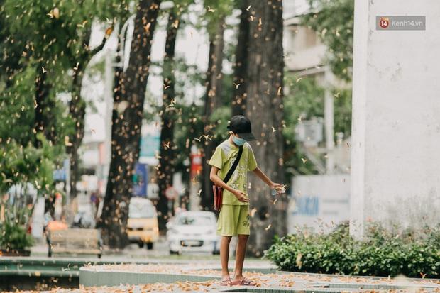 Sài Gòn bỗng nên thơ hơn bao giờ hết nhờ khoảnh khắc nghịch hoa chò của 2 vị phụ huynh vô cùng đáng yêu - Ảnh 3.