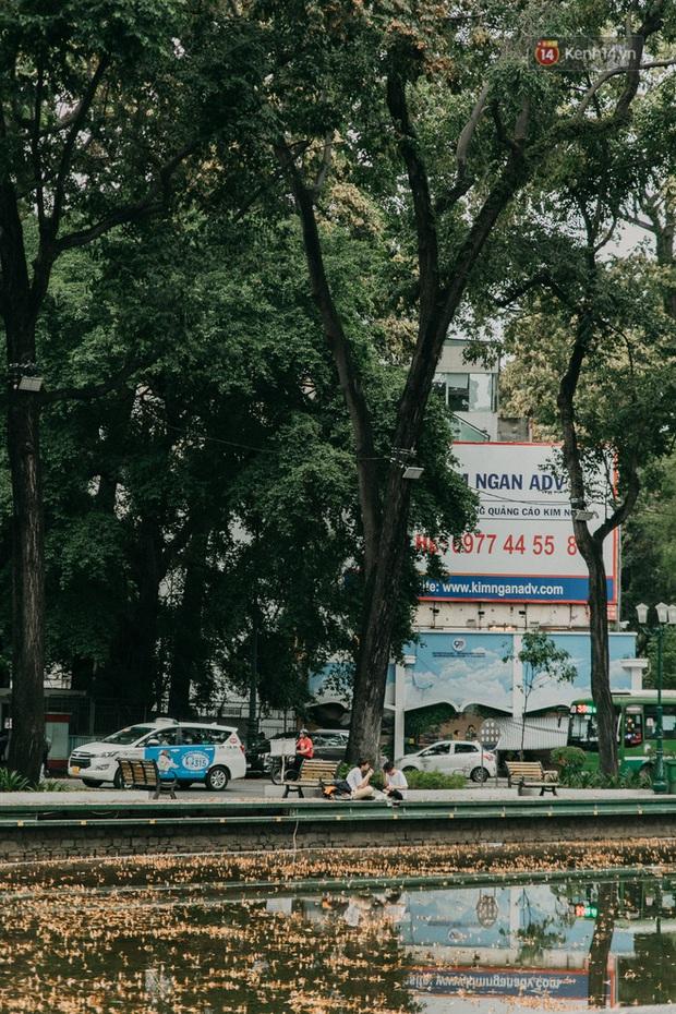 Sài Gòn bỗng nên thơ hơn bao giờ hết nhờ khoảnh khắc nghịch hoa chò của 2 vị phụ huynh vô cùng đáng yêu - Ảnh 7.