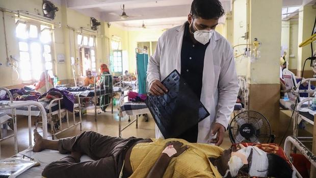 Nấm đen - Cơn ác mộng tiếp theo của các bệnh nhân Covid-19 ở Ấn Độ - Ảnh 1.