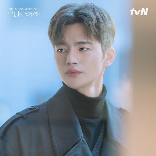 2 kiểu nội dung khiến chị em điên đảo ở phim Hàn: Gu nàng là trai ngoan Lee Do Hyun hay bad boy Seo In Guk? - Ảnh 8.