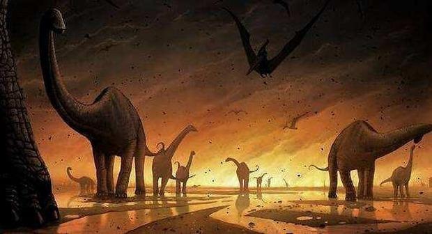 Loài khủng long đã đau đớn đến thế nào khi bị tuyệt chủng? Những giả thuyết đưa ra nằm ngoài sức tưởng tượng - Ảnh 5.