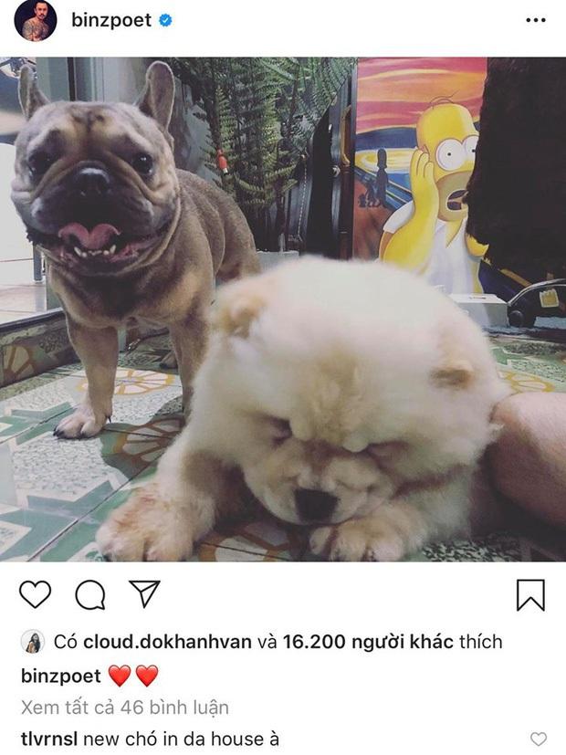 Châu Bùi đăng ảnh I Love You mừng sinh nhật Binz, có cameo chung vui là con chó từng nuôi với Decao - Ảnh 7.