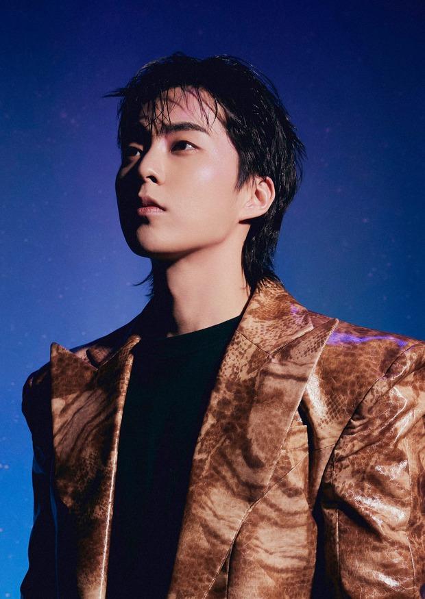 Bộ ảnh teaser comeback của EXO: Nhan sắc trẻ trung dù bị dìm, vốn được cài cắm hint từ MV của tình cũ Jennie? - Ảnh 10.