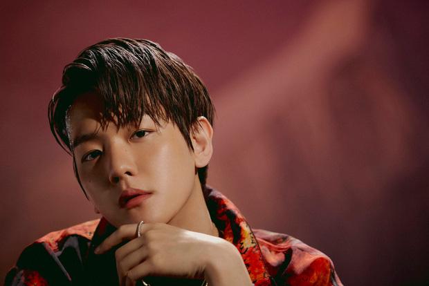 Bộ ảnh teaser comeback của EXO: Nhan sắc trẻ trung dù bị dìm, vốn được cài cắm hint từ MV của tình cũ Jennie? - Ảnh 19.