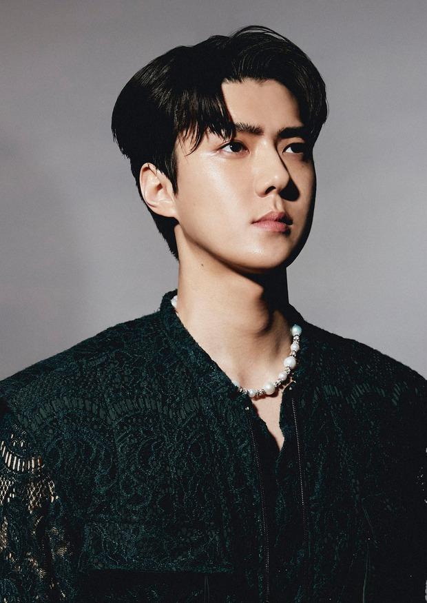 Bộ ảnh teaser comeback của EXO: Nhan sắc trẻ trung dù bị dìm, vốn được cài cắm hint từ MV của tình cũ Jennie? - Ảnh 29.
