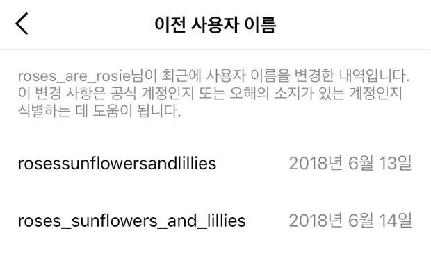 Sống ảo đổi tên Instagram như BLACKPINK: Rosé bê cả vườn hoa vào rồi không chọn được tên cho cún, Jisoo chắc ăn ngay từ đầu - Ảnh 11.