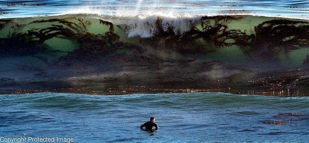 """Khoảnh khắc """"thuỷ quái"""" ẩn dưới lớp sóng biển chuẩn bị ập vào con người khiến dân mạng run sợ, biết sự thật càng hãi hùng hơn - Ảnh 1."""